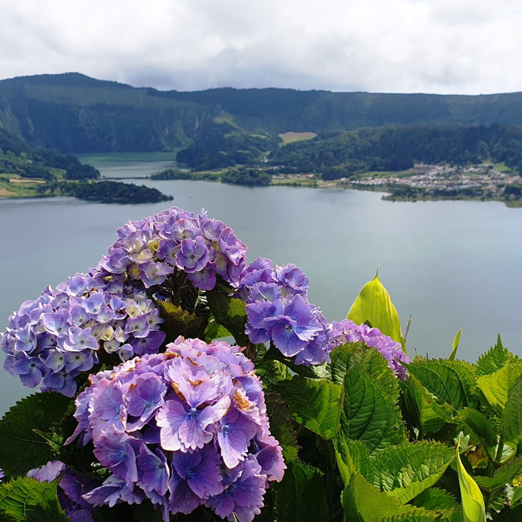 Van tour: Sete Cidades  & West part of the island (8h)
